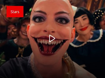 Magic and nothing more. Anne Hathaway turned into a witch