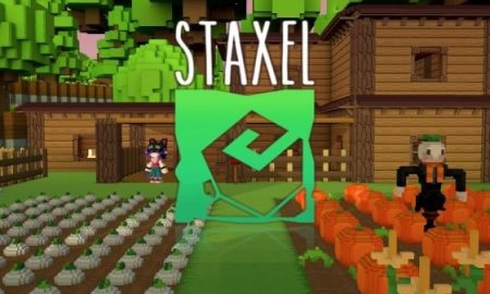 STAXEL ALL YOU NEED TO KNOW