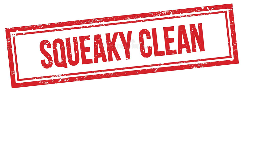 Squeaky Clean PC Latest Version 2021 Full Game Free Download